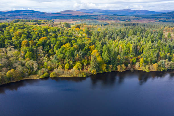 The aerial view from a drone of forest growing beside a Scottish loch in Dumfries and Galloway south west Scotland. The view from a drone as it is flown over a Scottish loch towards mixed woodland. The image was captured on an autumn morning, some of the trees have started to show their autumn colours. johnfscott stock pictures, royalty-free photos & images