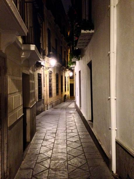 the alleys of old granada at night - mcdermp stock pictures, royalty-free photos & images