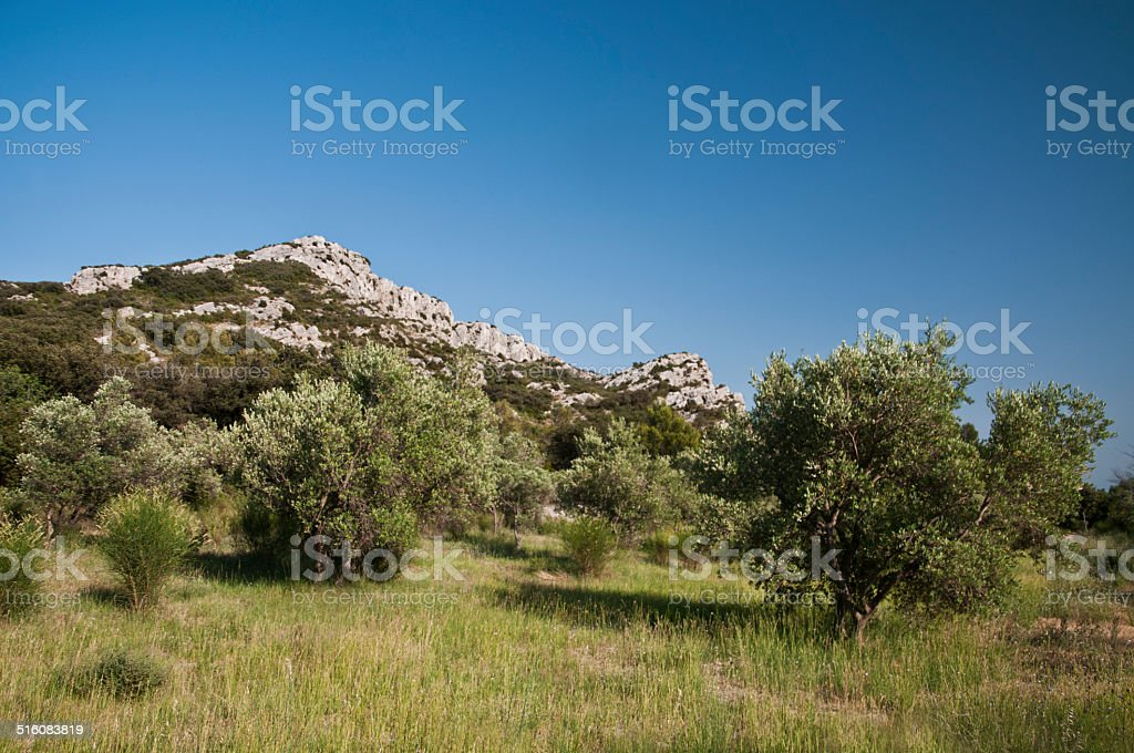 Les alpilles, Provence stock photo