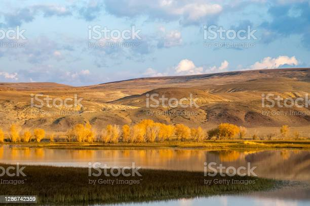 Photo of The altai mountains. landscape of nature on the Altai mountains and in the gorges between the mountains.