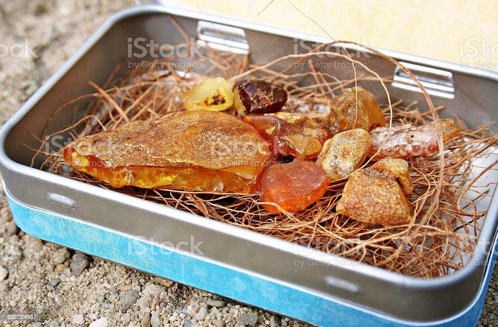 Die ambers in das Feld – Foto