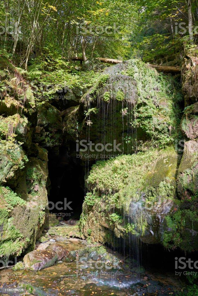 Der Amsel-Wasserfall bei Rathen im Elbsandsteingebirge – Foto