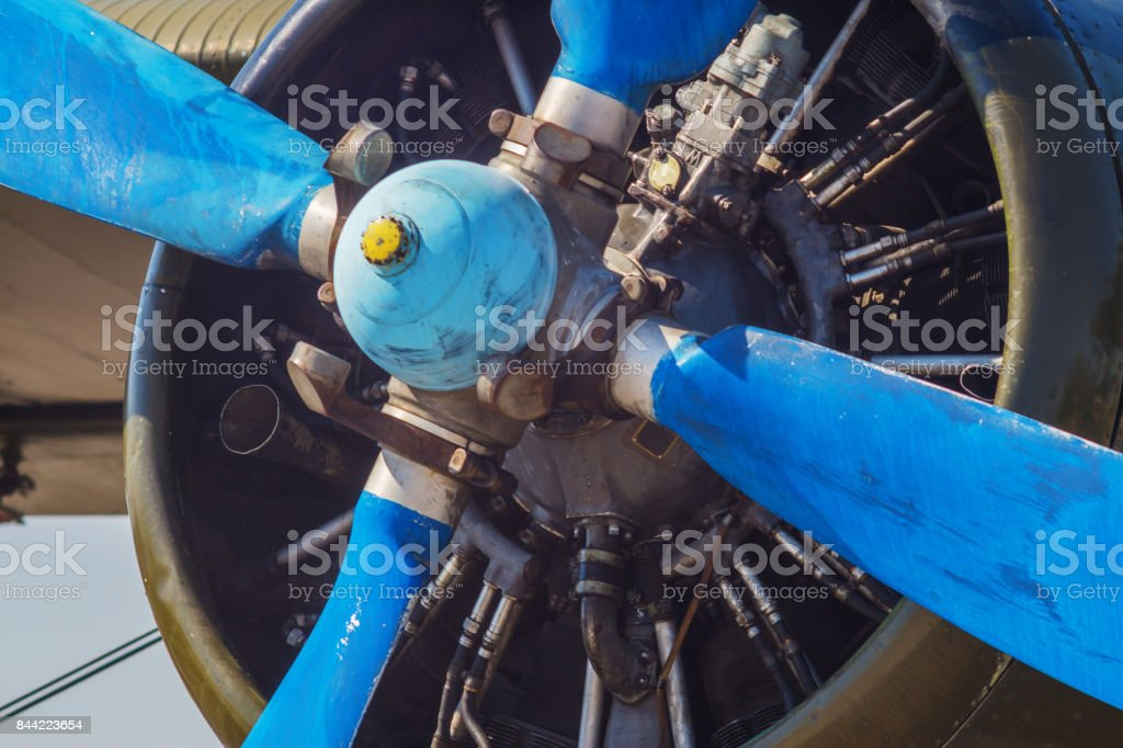 The An2 plane stock photo