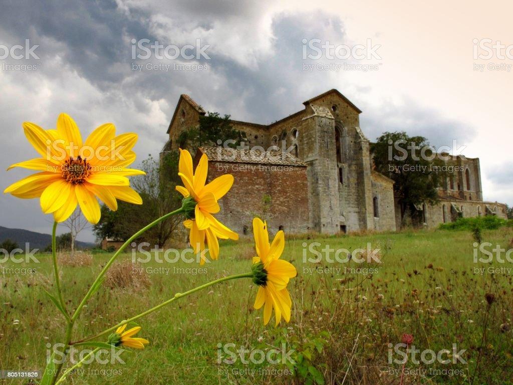 The ancient Abbey of San Galgano near Chiusdino, Tuscany, Italy, example of romanesque architecture in Tuscany stock photo
