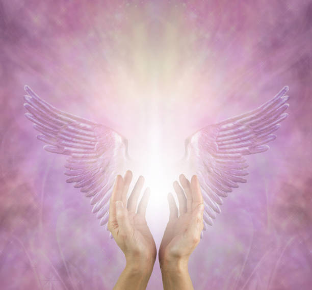 The Angels are always helping me female healer with hands reaching up between silver lilac angel wings and a bright white light against a pink lilac energy background with copy space above angelic stock pictures, royalty-free photos & images