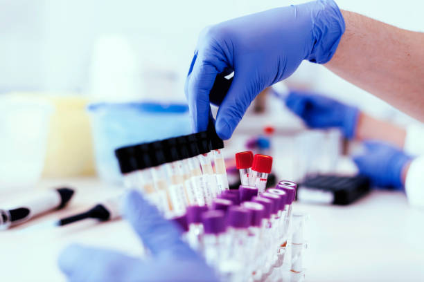 the answers lie in the evidence - laboratory stock photos and pictures