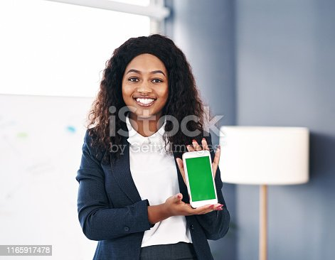 1132512759 istock photo The app that helped build my business 1165917478