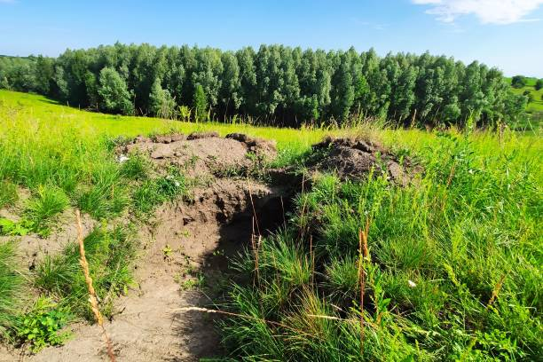 UKRAINE: The area of the anti-terrorist operation DONETSK REGION, UKRAINE - 29 JUNE 2020: The position of a military shooter dug in the ground in the area of the anti-terrorist operation antiterrorist stock pictures, royalty-free photos & images