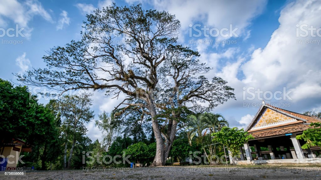 The area of Wat Khu Tao,   Bang Klam, Songkhla, Thailand royalty-free stock photo
