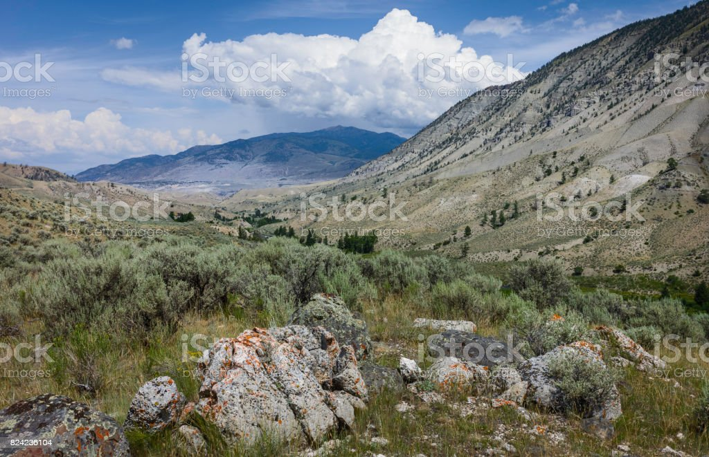 The aridity of the prairie flanked by the Rockies in summer, Montana, USA. stock photo