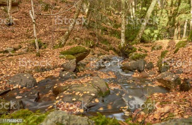 The arroyo del sestil del mallo descends in the autumn by the slope picture id1179535422?b=1&k=6&m=1179535422&s=612x612&h=5k q5cqcloyfvtlc0fbi5h41abrqba25sifwr  thkk=