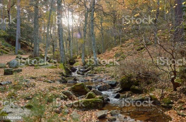 The arroyo del sestil del mallo descends in the autumn by the slope picture id1179535434?b=1&k=6&m=1179535434&s=612x612&h=kbz9ktks9pm1tvmqvgvywgpethihxetj50ushc4pnfo=