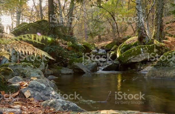 The arroyo del sestil del mallo descends in the autumn by the slope picture id1179535436?b=1&k=6&m=1179535436&s=612x612&h=2r8x7y7bxwk pb1zwzwnm vt3boskn8fitx7lurc4wc=