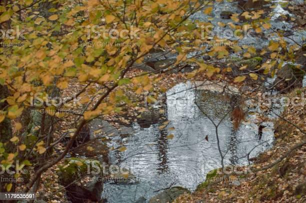 The arroyo del sestil del mallo descends in the autumn by the slope picture id1179535591?b=1&k=6&m=1179535591&s=612x612&h=c74rj9dbz624de0a hfufbs6vt2n0vty2qhnxr mhkm=