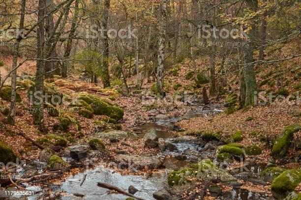 The arroyo del sestil del mallo descends in the autumn by the slope picture id1179535631?b=1&k=6&m=1179535631&s=612x612&h=dg7pm5ulf7zsbrn61kpgf1dgriv76yaxmavx05vpnne=