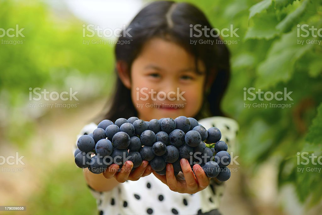 The Asian girl shows a bunch of grapes royalty-free stock photo