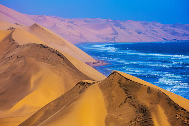 The Atlantic Ocean,  moving sand dunes, Namibia The west coast of the Atlantic Ocean. Giant moving sand dunes. Sandwich Harbour - part of Namib-Naukluft National Park, Namibia namibia stock pictures, royalty-free photos & images