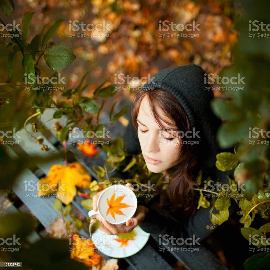 The Autumn tales royalty-free stock photo