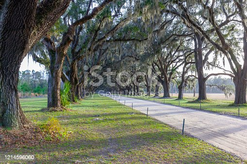 The avenue sheltered by live oaks and Spanish moss in Wormsloe Historic Site in Savannah, Georgia, USA. Wormsloe Historic Site, informally known as Wormsloe Plantation, is a state historic site.