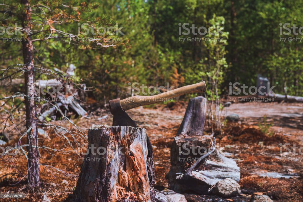 The axe stuck. Axe and wood. A sun bleached axe stuck in a block of wood. stock photo