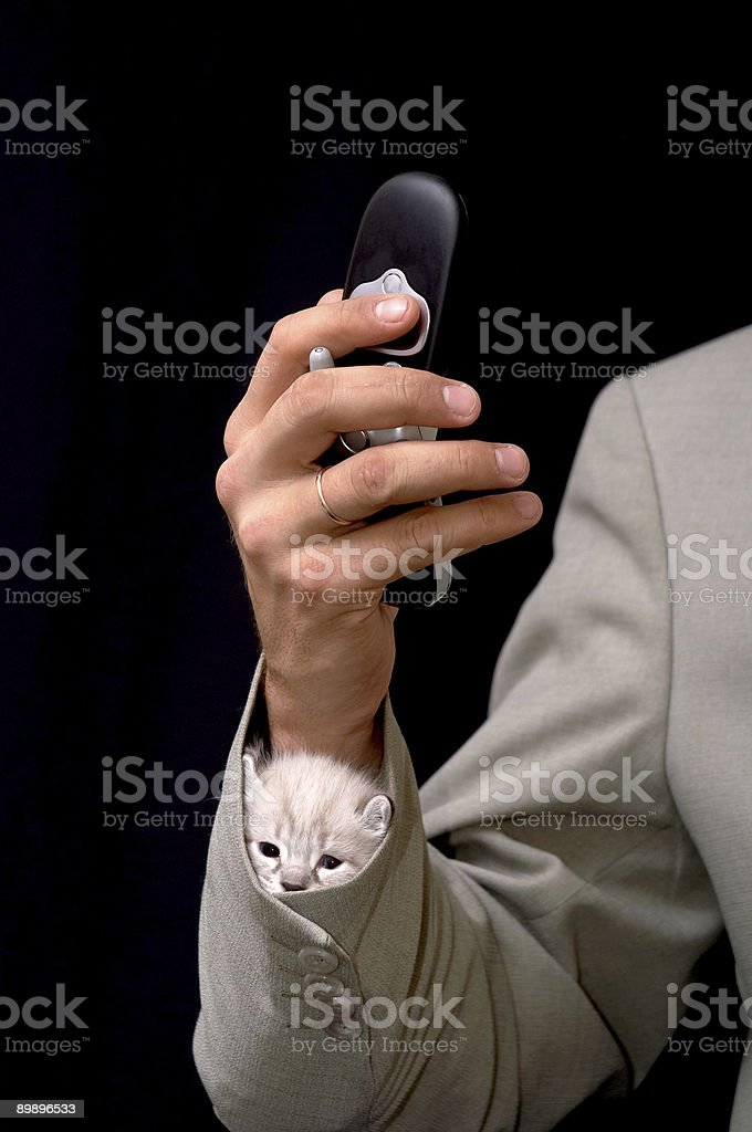 The baby in a sleeve royalty-free stock photo