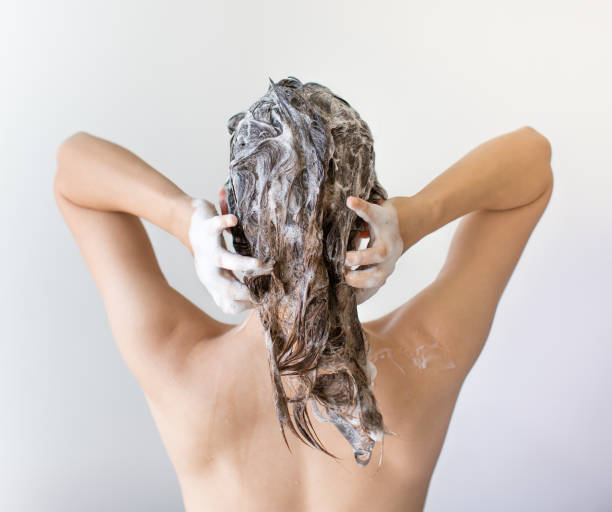 The back of a woman washing her hair full of suds in front of a white background. Young woman. Back shot. Hands on back of head. Hair has many suds from shampoo dandruff stock pictures, royalty-free photos & images