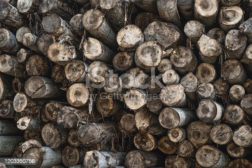 1139298729 istock photo The background of a lot of logs, overlapping, lined in a mess, waiting to be sorted in an outdoor factory 1203350756