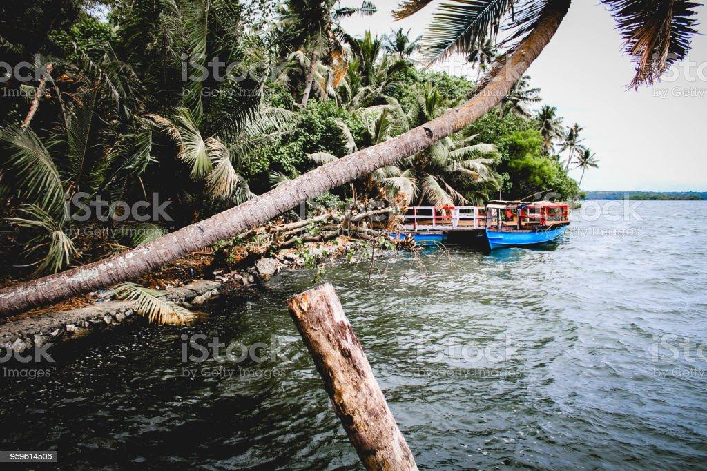 Los remansos - Foto de stock de Agua libre de derechos