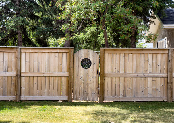 the backyard door - fence stock photos and pictures