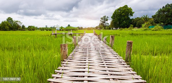 istock The bamboo  bridge walkway has green fields. With sunset 1001393130
