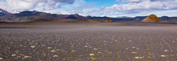 The basalt flats stock photo