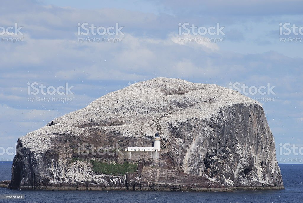 The Bass Rock royalty-free stock photo