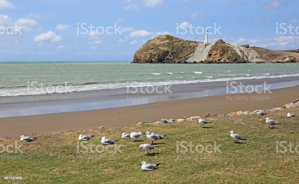 The beach, birds and the lighthouse stock photo