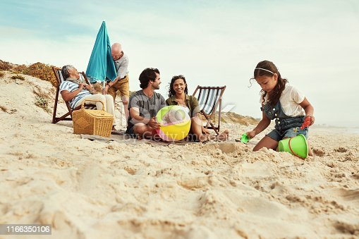 istock The beach brings us all together again 1166350106