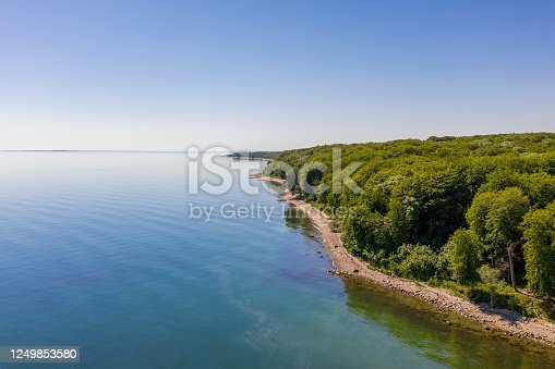 istock The Beach Forest 1249853580