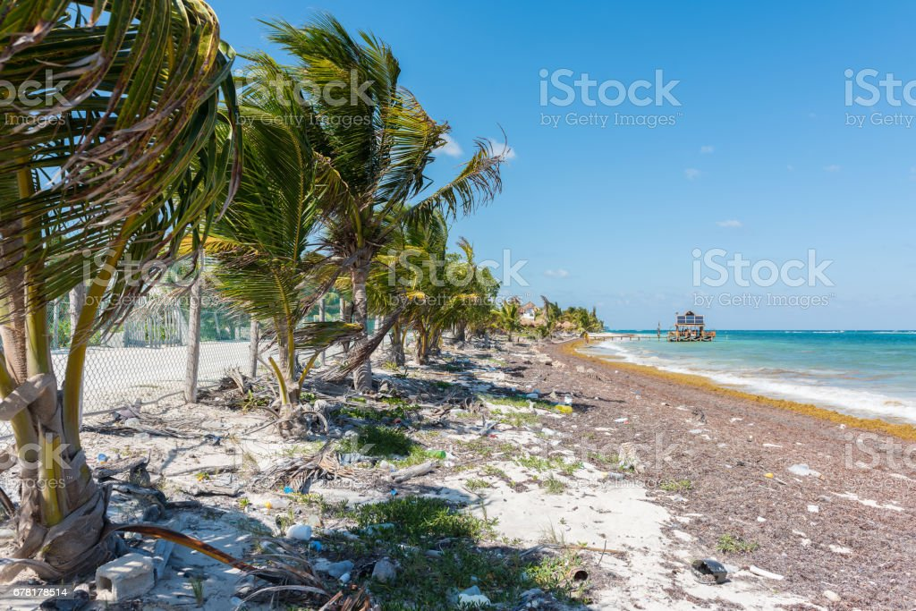The Beach In Mahahual Quintana Roo Mexico Stock Photo Download Image Now Istock