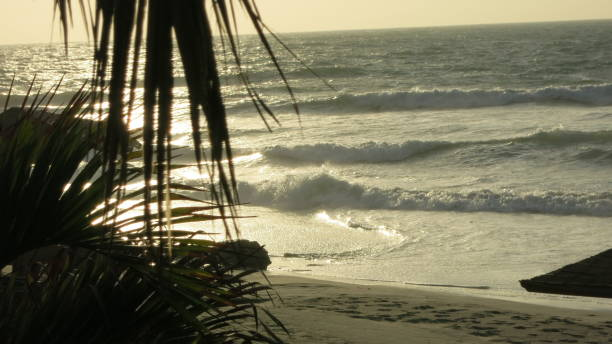 The beach of Punta Sal stock photo
