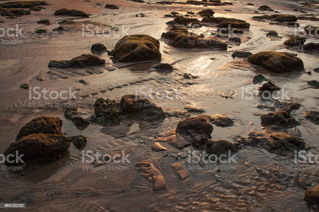 The beach of Tioman Island at low tide royalty-free stock photo