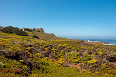 The beach on the Pacific coast in Big Sur, California, USA