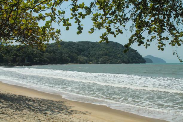 The beauties of brazilian coastline