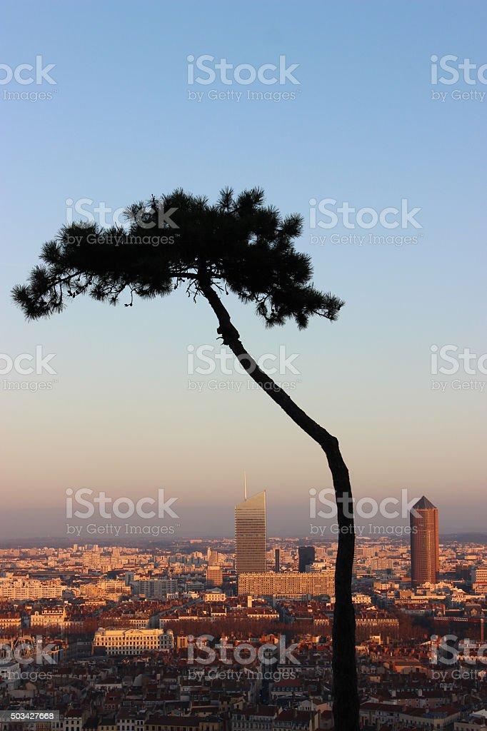 The Beautiful City of Lyon stock photo