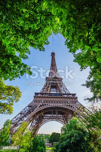 The Eiffel Tower shot through the trees on the streets of Paris.