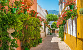 istock The beautiful Estepona, little town in the province of Malaga, Spain. 1154834228