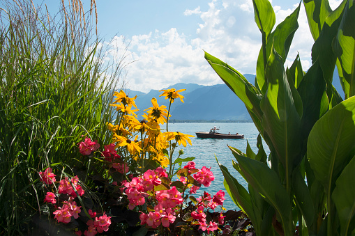 The Beautiful Flower-lined Quays of Montreux, Switzerland