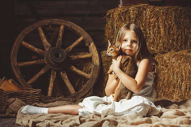 The beautiful girl with a cat about hay picture id530923298?b=1&k=6&m=530923298&s=612x612&w=0&h=auua180vvyuehl3viob26ez1xiezmuhuaozjvowpm2k=