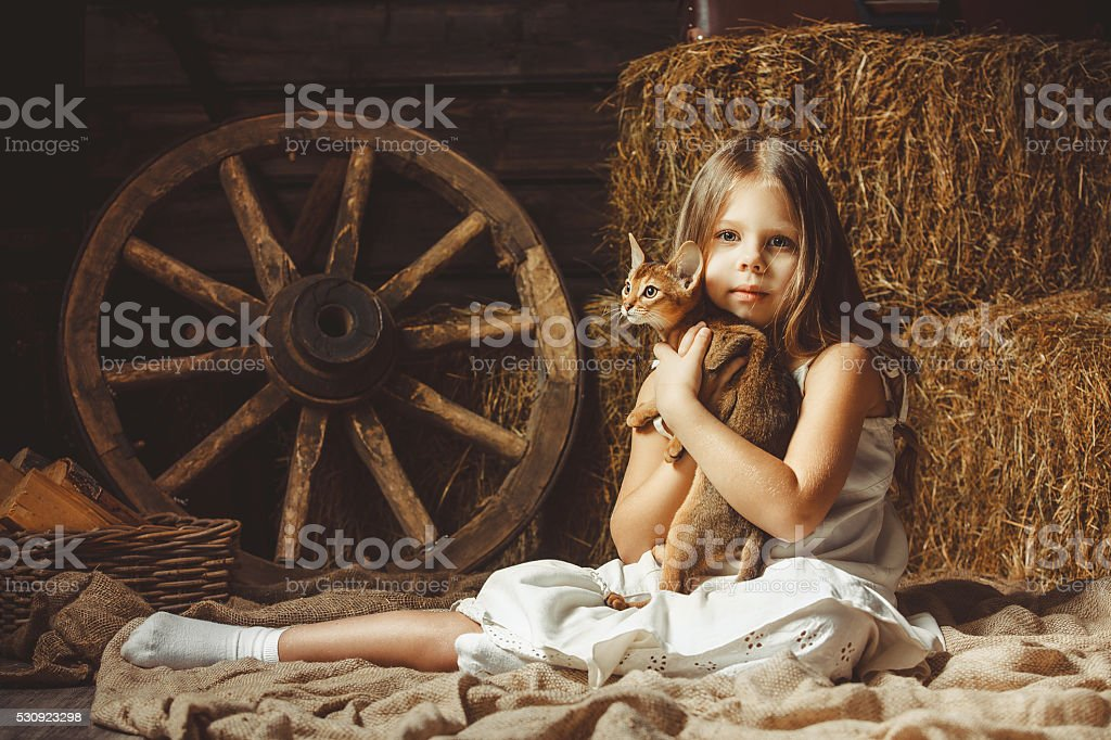 The beautiful girl with a cat about hay. stock photo