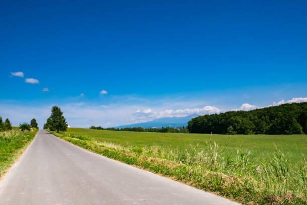 夏の美瑛町の美しい風景です。美瑛は北海道の富良野と旭川の間にあります。 - 日本 風景 ストックフォトと画像