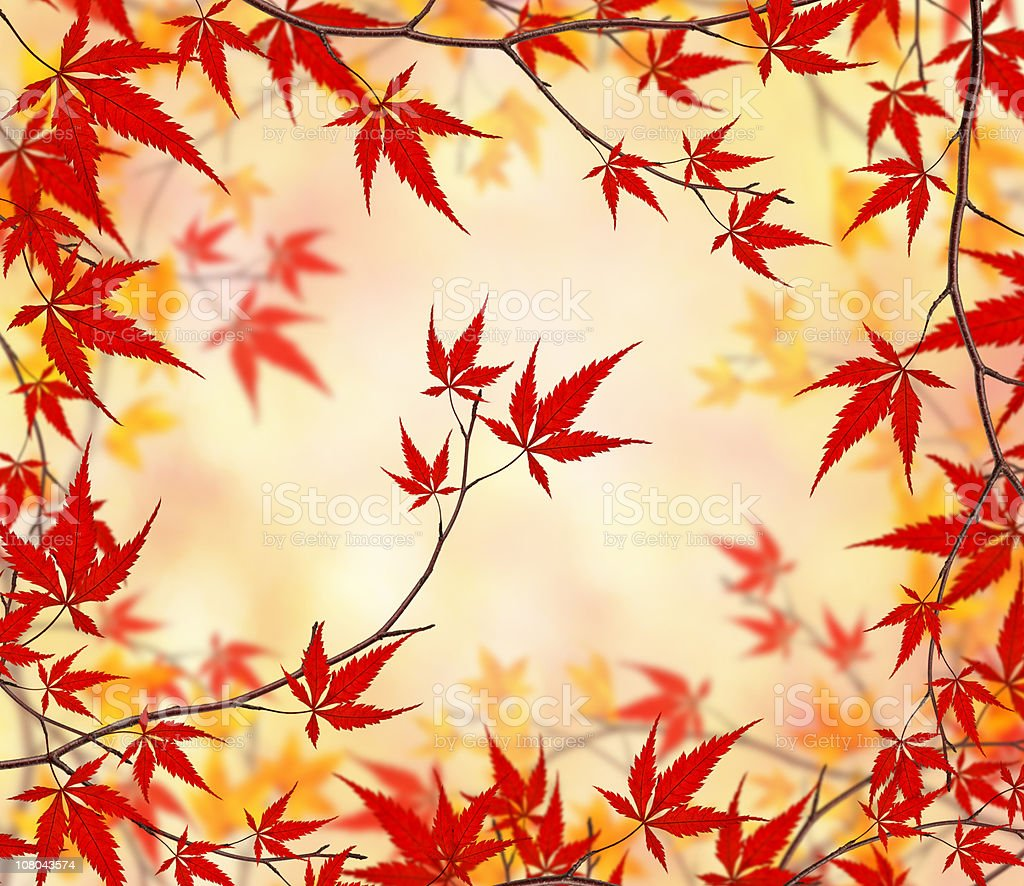 The Beauty Of Autumn royalty-free stock photo