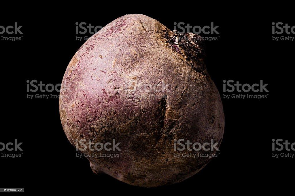 The Beet stock photo