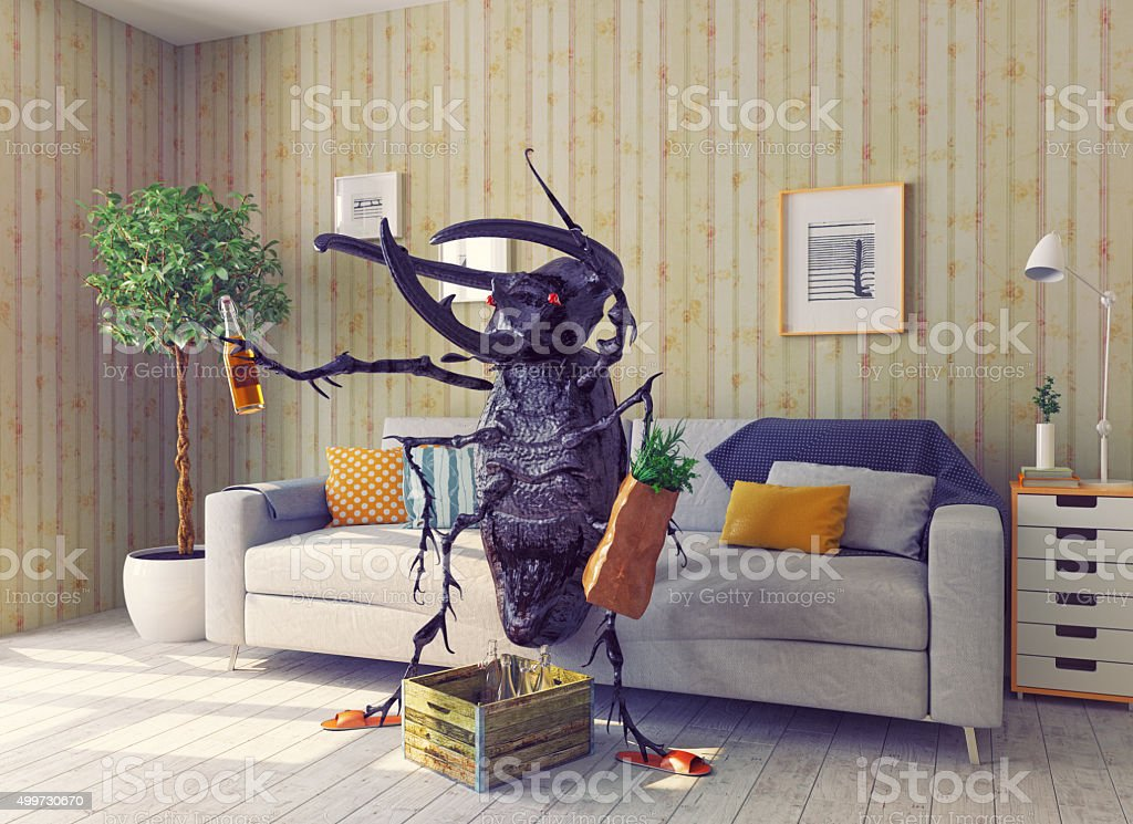 the beetle in the living room stock photo